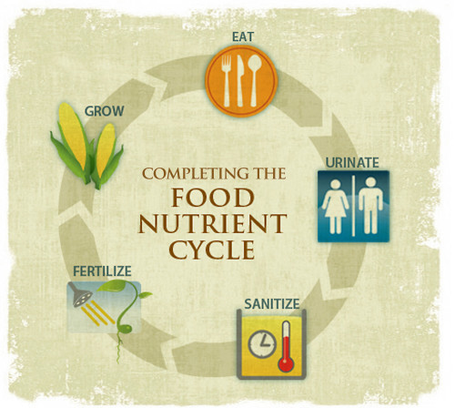 Completing the Food Nutrient Cycle