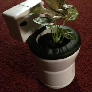Table Top Eco-Toilet!